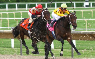 Horse Racing – A Profitable Betting System To Rely On